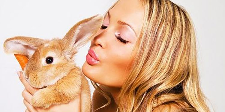 Homepage Cruelty Free Products